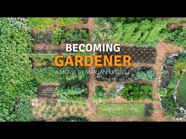 Becoming Gardener - no dig vegetable garden with a tiny house
