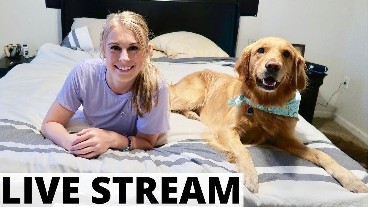 Happy Saturday! Live Stream with Me & Luna | Flight Attendant LIfe