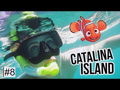 Capturei o Nemo em Catalina Island #IgorTakeLA Ep.8