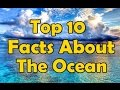 Top 10 Interesting Facts About The Ocean