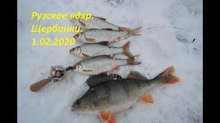 Рузское вдхр Щербинки 1 02 2020
