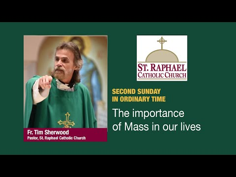 Fr. Tim's Homily: Why The Mass Is Important In Our Lives