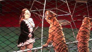 Circus. Tigers and lions. part 1. ����. ����� � ����. 1 �����.