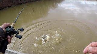 Winter Catfishing With Shiners!