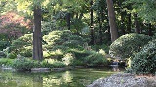 Entspannungsmusik - New Age - Meditation, Schlafen