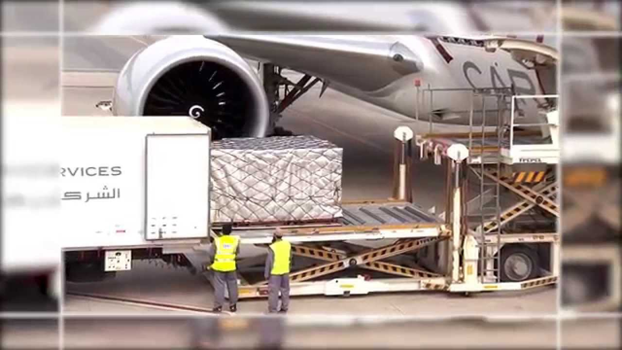 Qatar Airways Cargo - World-class cargo facility at Hamad International  Airport