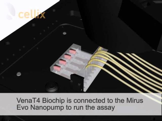 VenaT4 Biochip: Chemotaxis, Transmigration and Invasion Assays