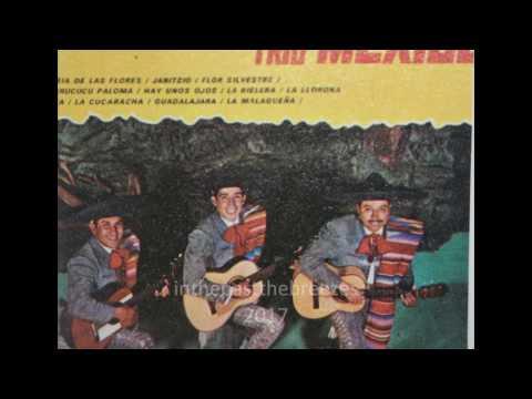 """Trio Mexico - """"La Malaguena"""" Folklore y cantos de Mexico"""