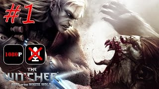 The Witcher: Enhanced Edition #1 - Каэр Морхен