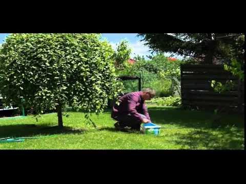 Ogród od A do Z odcinek 52