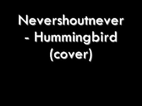 never shout never lyrics hummingbird - 480×360