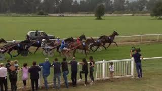Vidéo de la course PMU PRIX DE SOLENZARA