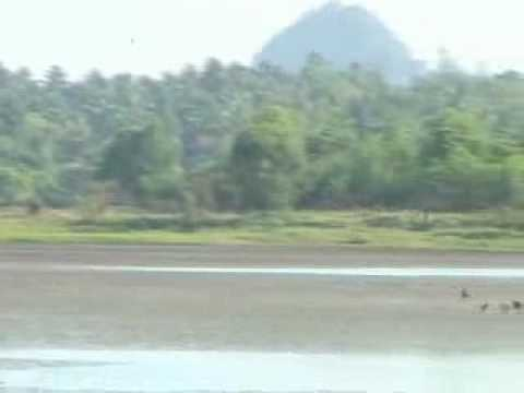 Zwe kabin mountain view and wild bird.flv