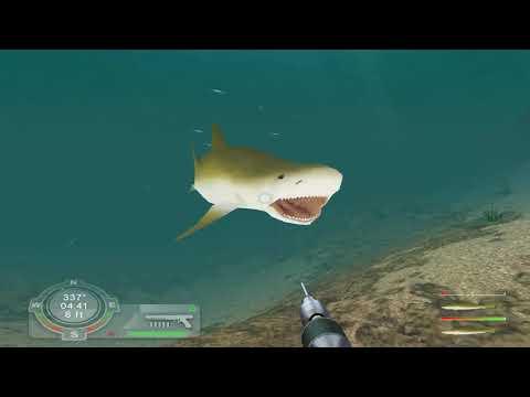Shark Games Week - 100%ing Shark! Hunting The Great White