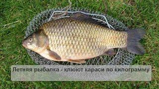 Летняя рыбалка - парень ловит карасей по килограмму