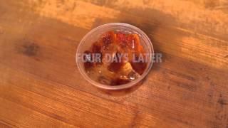 Drunken Gummy Bears  Adventures Of Kemi Adetiba  Things Kemi Cooks