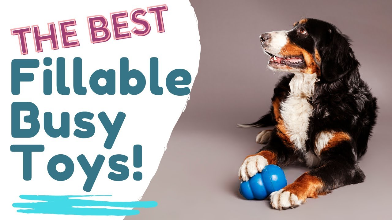 Busy Toys For Dogs That Are Fillable Youtube