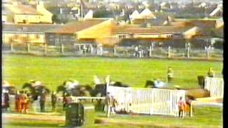 1991 - Cheltenham - Ritz National Hunt H