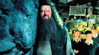 Большое Кино - Гарри Поттер и орден Феникса