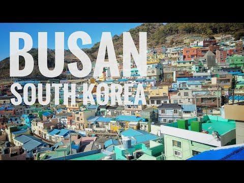 TRAIN TO BUSAN   South Korea Travel Vlog