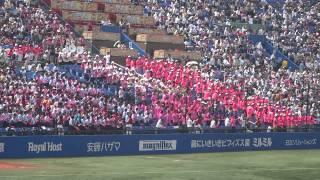 日大鶴ヶ丘高校 キューティーハニー.