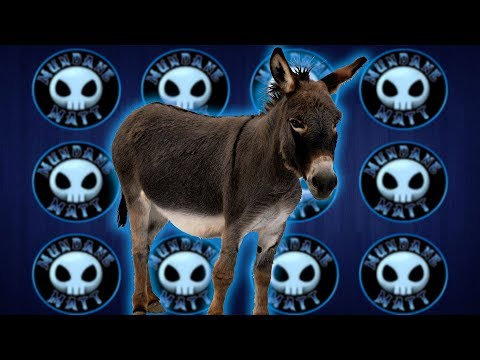 "15 teens treated for Rabies after being ""intimate"" with Donkey"