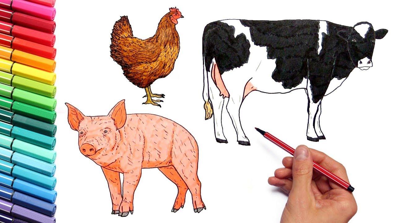 Farm Coloring Pages – coloring.rocks! | 720x1280