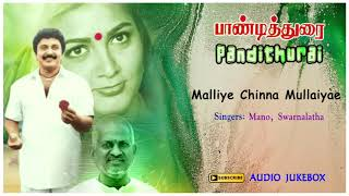 Malliye Chinna Mullaiyae Song | Pandithurai Movie Songs | Prabhu | Kushboo | Ilayaraja |Music Master