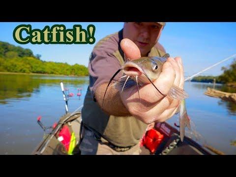 French Broad Catfish Caught Under Bridge