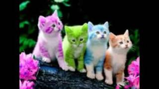 Gambar cover cute wallpapers free download for mobile