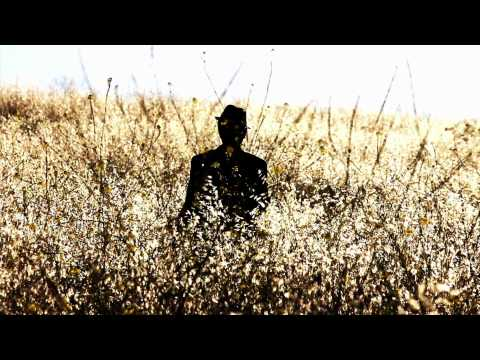 Pink Martini - Splendor in the Grass | Official Music Video