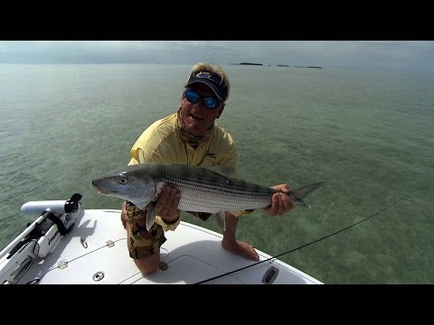 Screaming Bonefish Fishing The Flats In Downtown Islamorada Florida