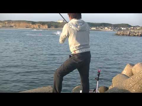 フカセ釣り IN 銚子マリーナ