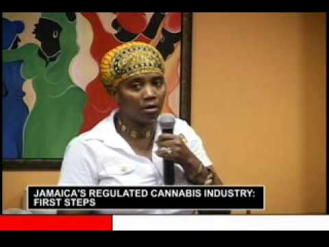 Jamaica's Regulated Cannabis Industry 2days Conference prt 4