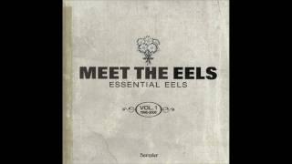 Eels - Climbing To The Moon (Jon Brion Remix)