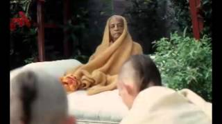 I Cannot Serve the Air or the Sky. I Must Serve a Person - Prabhupada 0732