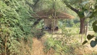 Buddha garden - A photo walk to Buddha garden New Delhi - Romance Really?
