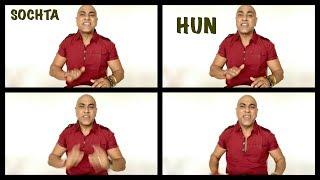 BABA SEHGAL - SOCHTA HUN - salute to Nusrat Fateh Ali Khan