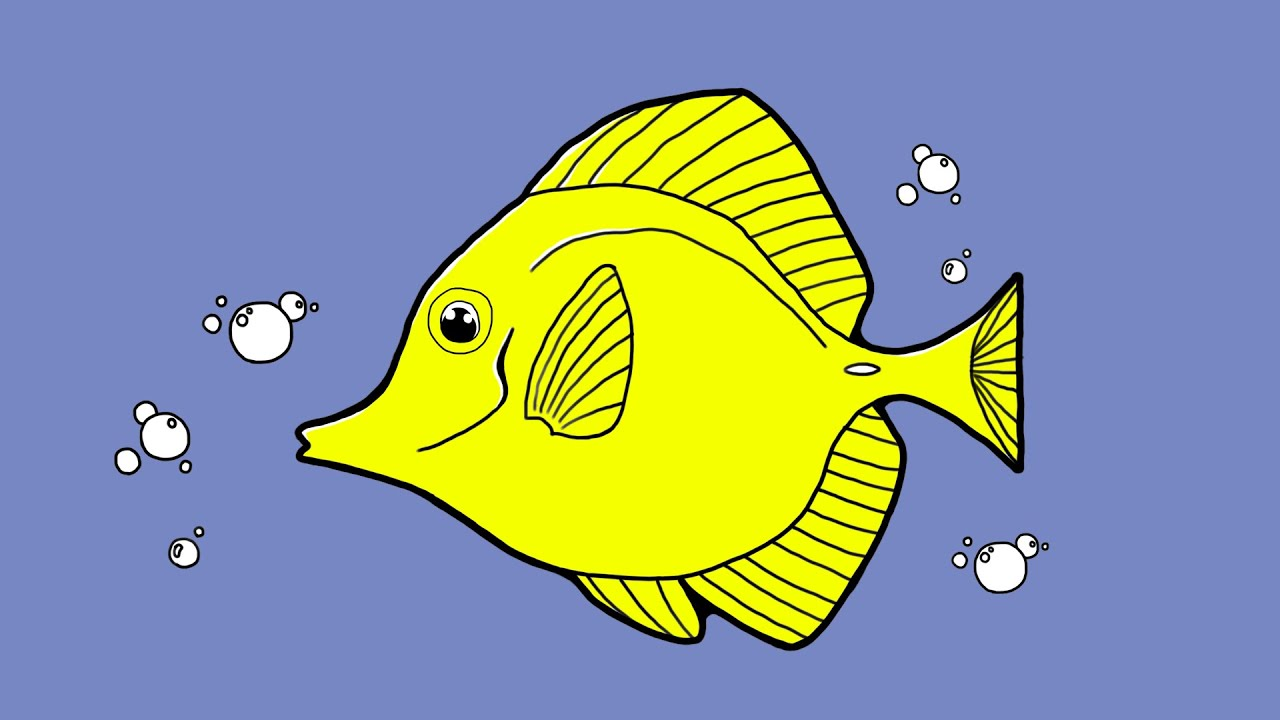Yellow tang fish drawing images for How to fish