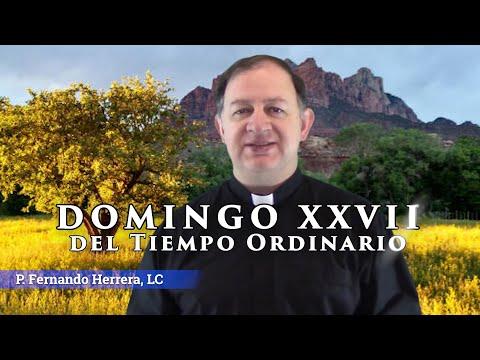 XXVII Domingo del Tiempo Ordinario - Ciclo C - Una fe que mueva montañas