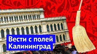Вести с полей: большой футбол в Калининграде