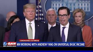 White House working with Andrew Yang on universal basic income