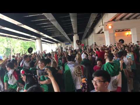Mexico fans at Luzhniki Stadium. Mexico vs Germany