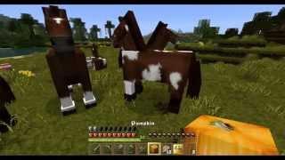 Let´s Play Minecraft - 4#070 - Ein Pferd, ein Sumpf und dunkle Nacht!