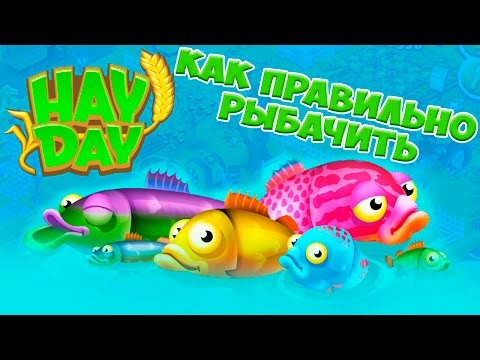 Hay Day КАК ПРАВИЛЬНО РЫБАЧИТЬ how to fish