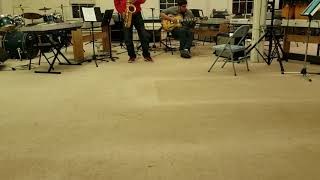 Yanagisawa T- WO2 Bronze Tenor Saxophone