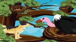 Jataka Tales - The Foolish Vulture - Birds Stories - Moral Stories for Children