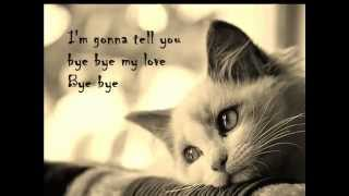 Souad Massi - Bye Bye My Love [Lyrics]