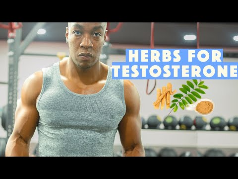 4 HERBS that boost testosterone levels & Tips for instant increase