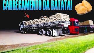 Carregamento Da Batata Em São Gabriel Goiás